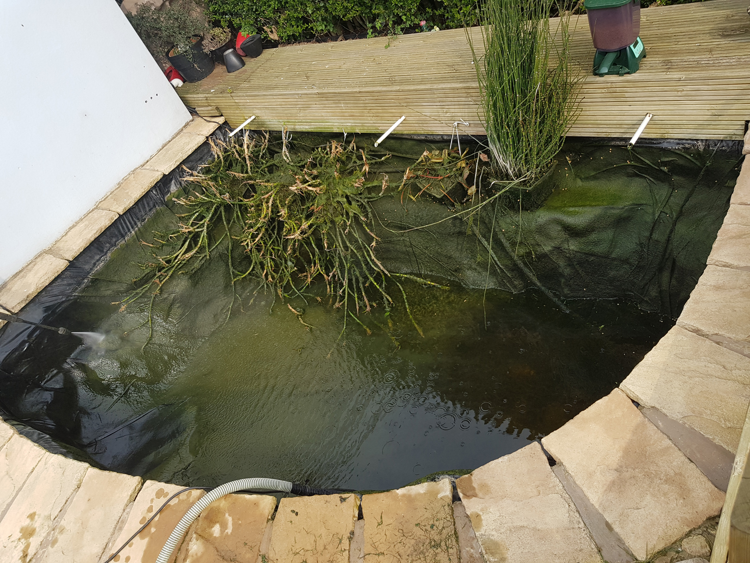 koi-and-pond-supplies-pond-cleaning-3
