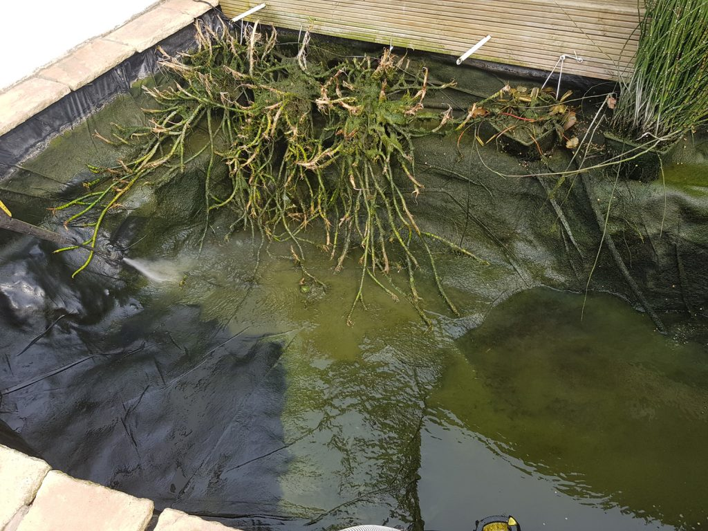 koi-and-pond-supplies-pond-cleaning-5